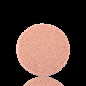 Shiseido Sponge Compact Foundation
