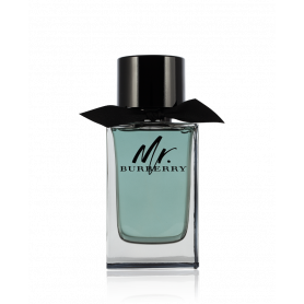 Burberry Mr.Burberry Eau de Toilette 100 ml