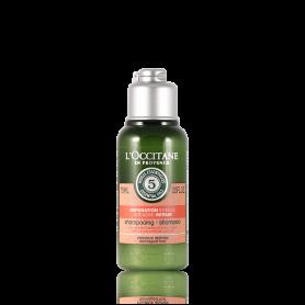 L´Occitane Aromachologie Réparation Intense Shampooing 75 ml