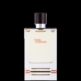 Hermes Terre D´Hermes Eau de Toilette 100 ml