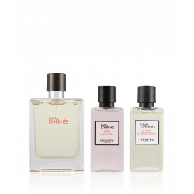 Hermes Terre D Hermes Eau de Toilette 50 ml+ASB 40 ml + SG 40 ml Set
